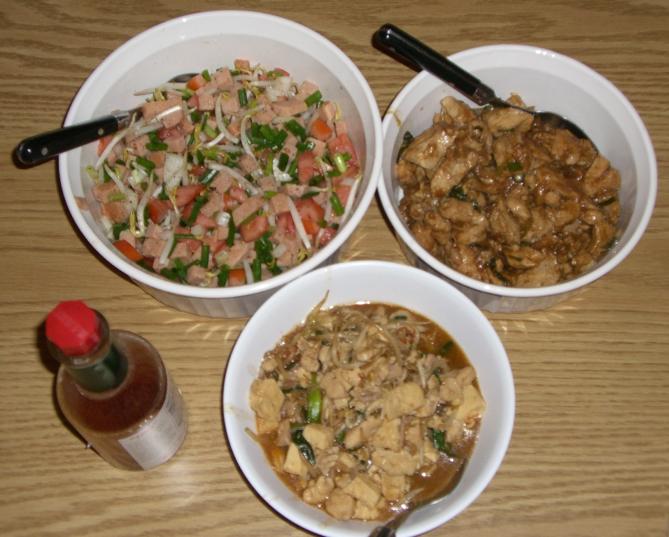 Lomi Turkey Salad / Pork Adobo / Chicken Bean Sprouts & Tofu